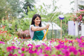 Employee watering plants with hose — Stock Photo