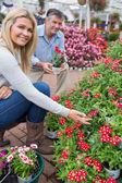 çiçeklere bakın crouching çift — Stok fotoğraf