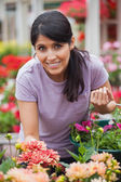 Cheerful woman shopping for flowers — Stock Photo