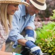 Couple gardening together - Stock Photo