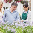 Two customers with a florist — Stock Photo #23090262