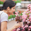 Black-haired woman smelling flower - Foto de Stock