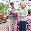 Stock Photo: Couple choosing plants