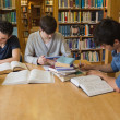 Students doing assignments in library — Stock Photo