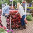 Couple looking for plants with a trolley — Stock Photo