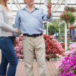 Couple looking for a plant — Stock Photo