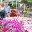 Smiling couple standing in the garden centre — Stock Photo #23090994