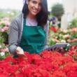 Garden center worker looking at flowers using tablet — Stock Photo