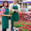 Two garden center workers with one holding flower pot - Stock Photo