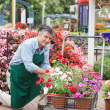 Royalty-Free Stock Photo: Garden center worker with trolley