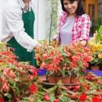Garden center employee and customer talking — Stock Photo