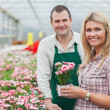 Smiling woman holding flower pot with employee - Stock Photo