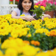 Woman taking a yellow plant — Stock Photo