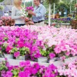 Stock Photo: Couple choosing pink flowers