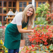 Smiling gardener caring about flowers — Stock Photo