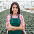 Greenhouse worker smiling in greenhouse nursery — Stock Photo