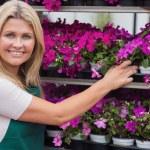 flores de tomar mujer de estantes — Foto de Stock