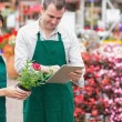 Garden center workers using tablet pc to check flowers — Stok fotoğraf