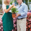 Florist explaining something to man — Stock Photo