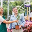 Florist helping the customer — Stock Photo