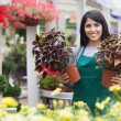 Garden center worker holding two plants while standing outside — Stock Photo