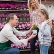 Employee giving a flower to little girl in garden center — Stock Photo