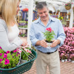 Couple deciding on a plant — Stock Photo