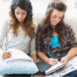 Stock Photo: Two women sitting in couch writing notepads