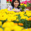 Assistant planting flowers in the patch — Stock Photo #23093028