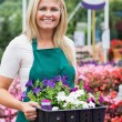 Cheerful florist carrying boxes — Stock Photo #23093068