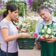 Woman carrying a basket while buying flowers and talking to empl — Stock Photo #23093076