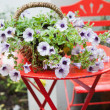 Stock Photo: Basket of flowers