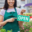 Stock Photo: Womholding open sign