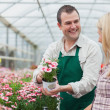 Woman deciding on flower with employee — Stock Photo