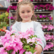 Little girl showing pink flowers — Stock Photo