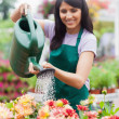 Garden center worker watering plants — Stock Photo #23094054