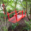 Red bridge in forest - Foto Stock