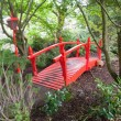 Red bridge in forest - Stok fotoraf