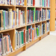 Bookshelf at library — Stockfoto #23098736