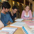 Students in the library studying together — Stock Photo #23099574