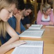 Students studying as a group — Stock Photo #23099682
