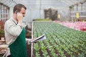 садовник вызова и заметок в парнике — Стоковое фото