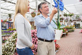 Gelukkige paar kijken naar ongebruikelijke plant — Stockfoto