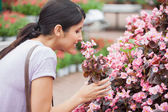 Black-haired woman smelling flower — Stock Photo