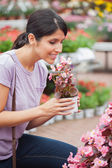 Woman raising a flower while smelling — Stock Photo