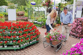 Customers pushing trolley through garden center — Stock Photo