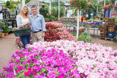 Smiling couple standing in the garden centre — Stock Photo