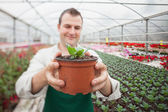 Cheerful man holding a potted plant — Stock Photo