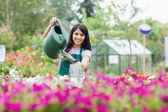 Cheerful gardener watering plants — Stock Photo