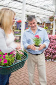 Couple deciding on a plant — Stock Photo